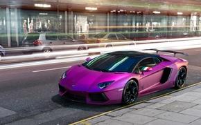 фиолетовый, автомобиль, Lamborghini, ламборгини
