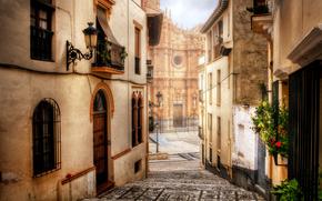 город, собор, Гуадис, дома, окна, здания, дороги, Испания, двери, улица