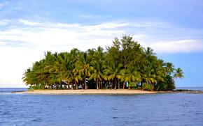 海, 島, パームス, 岸, 風景