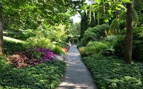 кусты, небо, кмень, Хайфа, цветы, мох, сад, Израиль, зелень, дорога, Бахайские сады