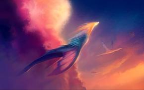 нео, свет, арт, полёт, солнце, тучи, драконы
