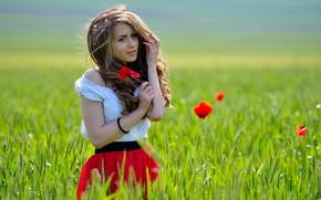 поле, очарование, девушка, маки, цветы, улыбка, задумчивость, шатенка, ветер