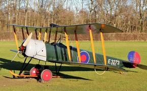 трава, двухместный, поле, базовый, учебно-тренировочный самолёт, британский
