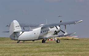 easy, multi-purpose, plane, biplane, field