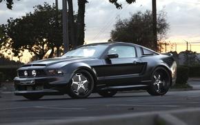 vado, coche, poshness, puesta del sol, árboles, negro, gracia, Ford Mustang, cielo, puesta a punto, elegancia, Drives, carretera