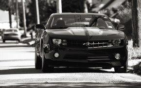 авто, камаро, черный, Chevrolet, шевроле