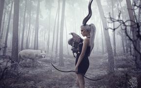 foresta, cipolle, ragazza, alberi, Corni, aquila, balestra, cacciatore, Boom, lupo