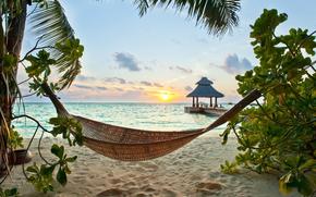 sand, sea, beach, shore, tropics, Palms