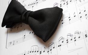 галстук, бабочка, ноты