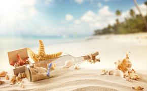 SEASHELLS, mare, estate, spiaggia, puntellare, ricreazione, messaggio nella bottiglia, sole, sabbia