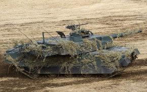 маскировка, боевой, поле, японский, основной, танк