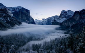 Yosemite National Park, valley, winter, California, forest, Sierra Nevada Mountains, trees