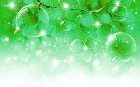 shines, autumn, sprig, foliage, bubbles