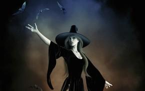 магия, ведьма, летучие мыши, шляпа, девушка, колдовство