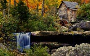 Babcock State Park, Mill Crist, automne, forêt, rivière, cascade, moulin, paysage