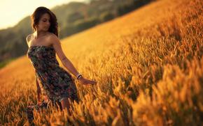 estate, vestire, ragazza, tramonto, campo