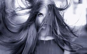 волосы, портрет, взмах
