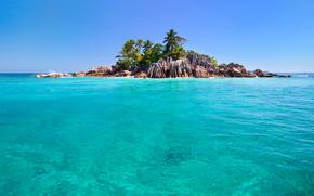 ocean, Seychelles, sky, Rocks, Palms, island, sea
