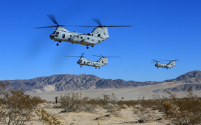 American, Mountains, sky, Military transport helicopters, sand, bush