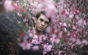 взгляд, парень, сад