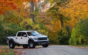 alberi, Car, ford, macchina, carta da parati