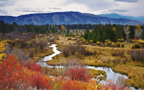 autumn, Mountains, small river, trees, landscape