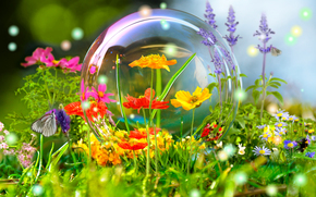 butterfly, bubble, meadow, Flowers, nature, reflection, ball