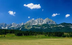 Австрия, горы, гора Вильдер Кайзер, лес, луг, Альпы