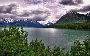 Kenai Lake, lake, Mountains, trees, landscape