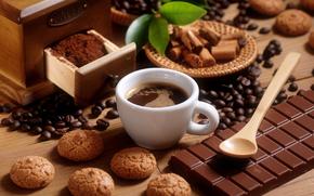 cinnamon, chocolate, cup, coffee, spoon, dessert, cookies, Grain, foliage, milk, tile
