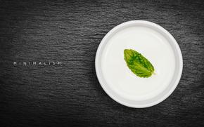 фотограф, лист, минимализм, тарелка