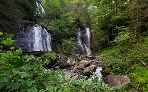 foresta, cascata, Rocce, alberi, natura