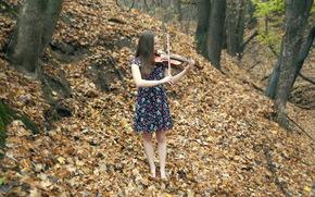Música, violín, otoño, chica