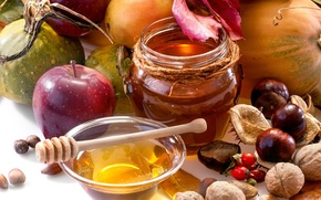 autumn, jar, fruit, apple, nuts, vegetables, chestnuts, honey, food, pears