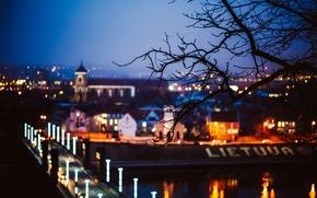 mancha, Lituania, ciudad, noche, rama, puente, luces, árboles, carretera, árbol, Kaunas