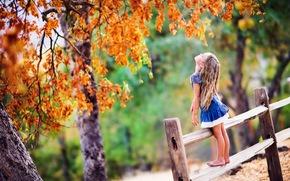 деревья, девочка, ограда, листва, ребёнок