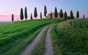 небо, Тоскана, кипарисы, вечер, дорога, облака, тропинка, розовый, трава, Италия, закат, деревья