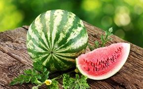 slice, watermelon, summer, meat, table