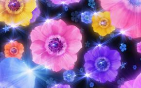光, コラージュ, 花びら, 輝く, フラワーズ, 壁紙