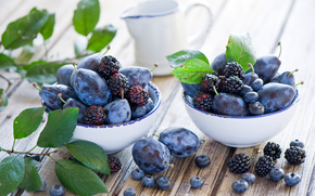 table, foliage, plums, BERRY, blackberry, fruit, dishes