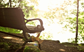 leaves, bench, bench, sun, trees, background, Mood, Widescreen, fullscreen, tree, A bench, bokeh, wallpaper, shop, foliage, Widescreen