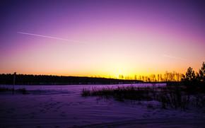 cielo, bosque, nieve, árboles, carretera, huellas, invierno, naturaleza, belleza, hierba, puesta del sol