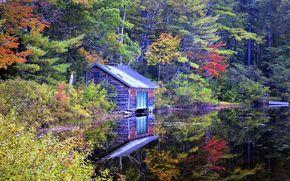 озеро, дом, лес, деревья, пейзаж, осень