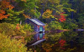lake, home, forest, trees, landscape, autumn