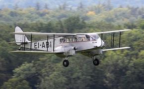 Великобритания, первый, авиалайнер, для низкотарифных линий
