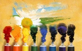 тюбики, обои, гуашь, настроения, полноэкранные, рисунок, цветок, широкоэкранные, широкоформатные, краски, фон