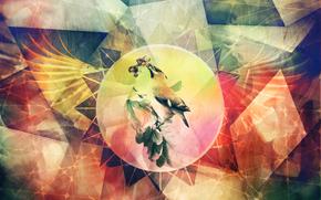 abstraction, grunge, bird, wings, Photoshop, handiwork, COLOR, line