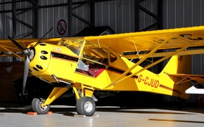 easy, plane with folding wings, American