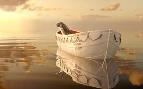 приключения, волны, пейзаж, небо, отражение, лодка, драма, океан, Жизнь Пи, взгляд, горизонт, вода, шлюпка, бенгальский тигр, свет, взор, кино, море, рябь, фильм