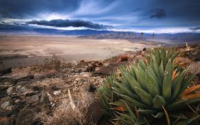 южная Калифорния, пустыня, сухое озеро, горная цепь, буря